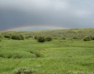 Carbon County Rainbow