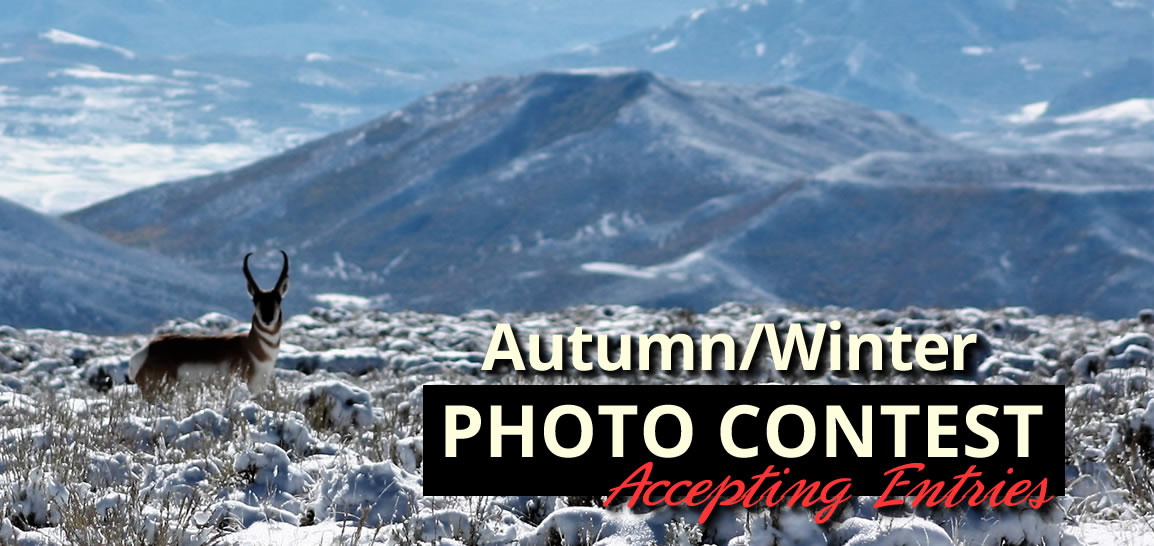 Carbon County Photo Contest...