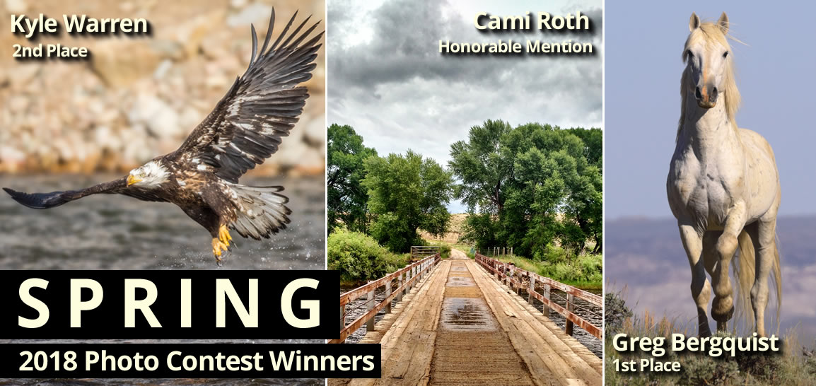 Spring 2018 Photo Contest Winners