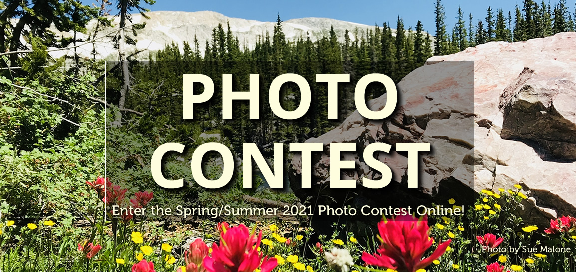 Enter the 2021 CCVC Spring/Summer Photo Contest